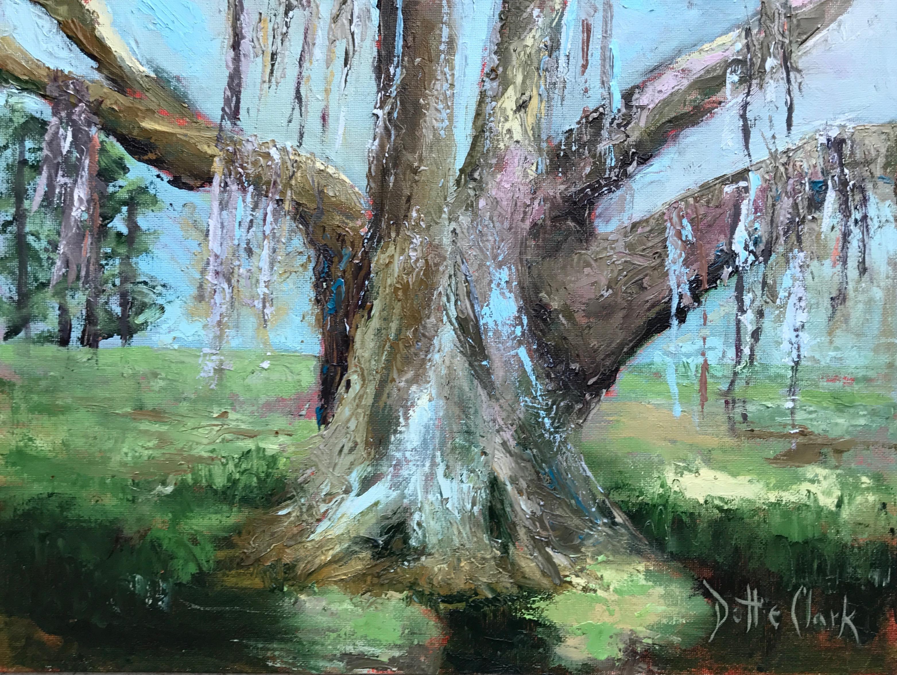 Hofwyl Oak